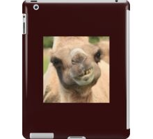 Camel Teeth and a Little Lunch iPad Case/Skin