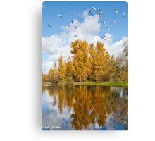 Fall Colors, Clouds and Western Gulls, Reflected in a Pond Canvas Print