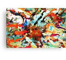 Cosmic Explosion Canvas Print
