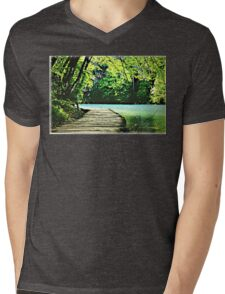 The Path of the Water Mens V-Neck T-Shirt