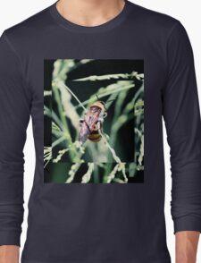 Restful Bee Long Sleeve T-Shirt