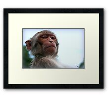 I Need To Take Look At Your Wipers! Framed Print