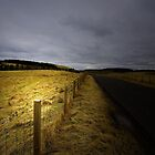 MY ROAD HOME by leonie7