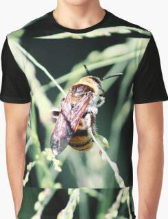 Restful Bee Graphic T-Shirt