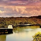 Meandering Through The Mangroves by wallarooimages