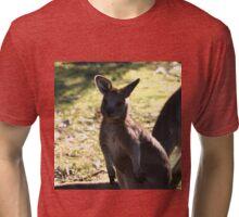 Joey Tri-blend T-Shirt