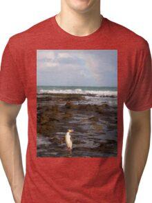 Yellow-eyed Penguin Tri-blend T-Shirt