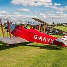 Southern Martlet G-AAYX by Colin Smedley