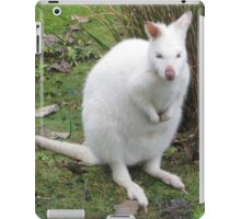 Albino Wallaby iPad Case/Skin