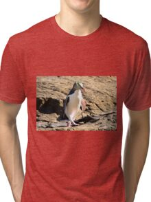 Yellow-eyed Penguin Walking - Catlins region of New Zealand Tri-blend T-Shirt