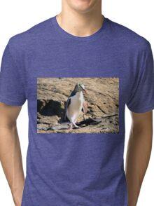 Yellow-eyed Penguin Walking - Catlins region of New Zealand Tri-blend T-Shirt