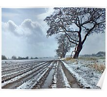 Light Snow covering Winter Farmland Poster