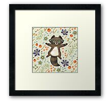 Funny little raccoon on the meadow Framed Print