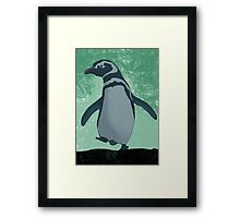 Cute little penguin Framed Print
