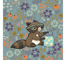Funny little raccoon collects crickets Photographic Print