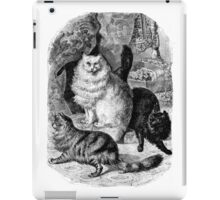 Vintage Angora Persian Cats Illustration Retro 1800s Black and White Image iPad Case/Skin