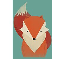 The Wise Red Fox Photographic Print
