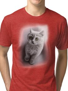 british shorthair kitten /Agat/ Tri-blend T-Shirt