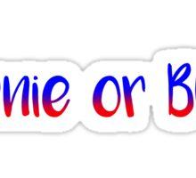 Bernie or Bust - Bernie Sanders Sticker