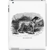 Vintage Dalmatian Dog Illustration Retro 1800s Black and White Image iPad Case/Skin