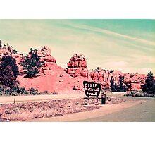 Dixie Land Photographic Print