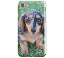 Adorable Puppy iPhone Case/Skin