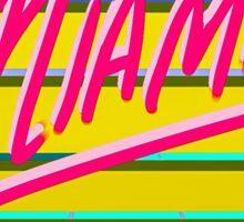 """Retro """"Miami"""" Sun & Grid design Sticker"""