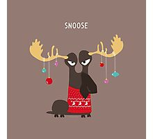 Snoose Photographic Print