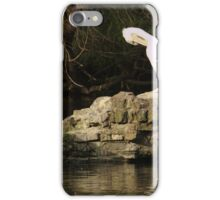 On Pelican Island iPhone Case/Skin