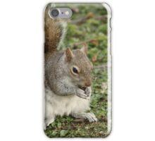 Squirrel Eating Nut iPhone Case/Skin
