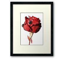 Love is... Framed Print