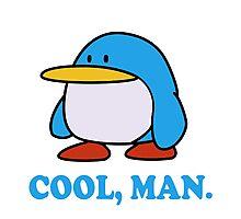 Paper Mario Penguin Photographic Print
