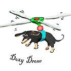 Doxy drone, dachshund flying with drone. by Mary Taylor