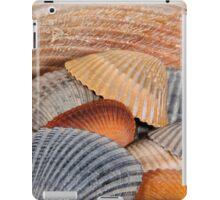 Colorful Seashells iPad Case/Skin