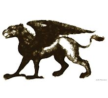 Gryphon Mythical Creature Illustration Photographic Print