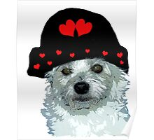 dog with a heart cap Poster