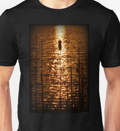 Fire Water Unisex T-Shirt