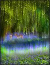 Bambis and Bluebells by SWEEPER