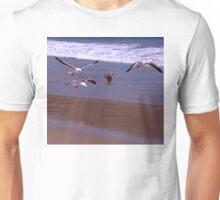 Seagulls Flying on the Beach Unisex T-Shirt