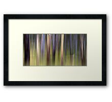 The Guardians Framed Print