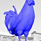 Blue Chook by wiccanrider