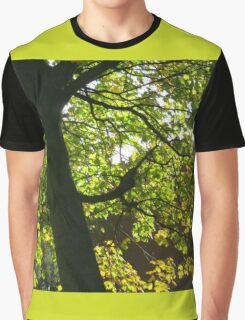 Tree Silhouette with Backlit Leaves Graphic T-Shirt