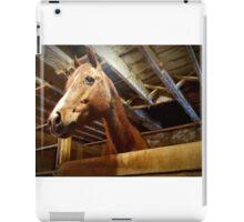 Neighborhood Horsey iPad Case/Skin