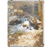 Scenic Stream  iPad Case/Skin