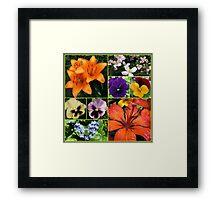 Orange Sparkle - Collage featuring Orange Lilies Framed Print
