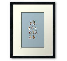Oz Owls Framed Print