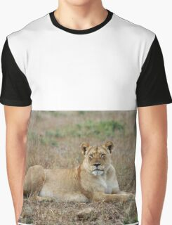 WATCHING - The lioness -  Panthera leo Graphic T-Shirt