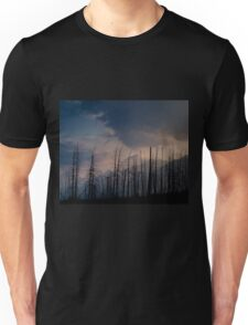 Glacier National Park after 2015 Wildfire Unisex T-Shirt