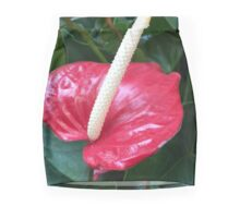 Anthurium Beauty III If you like, please purchase, try a cell phone cover thanks Mini Skirt