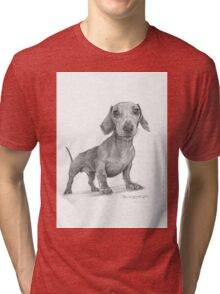 Max the Dog Tri-blend T-Shirt
